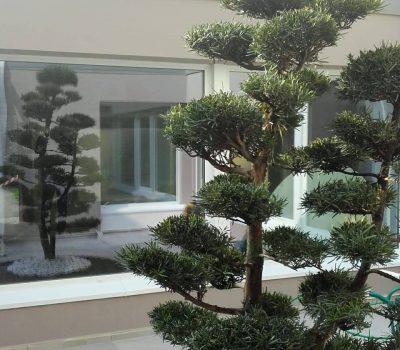 Giardini Aziendali
